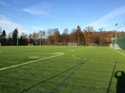 Performance Synthetic Pitches