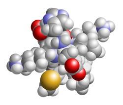 LunaRich, LunaRich points, LunaRich X, lunasin, epigenetics, Reliv