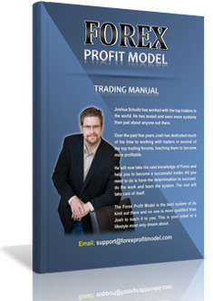 Forex trading business model