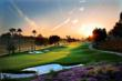 Palm Desert Homes Bask in Shoopy Scramble Spotlight by Brad Schmett