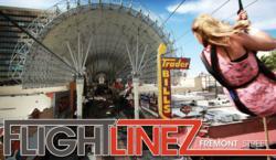 zipline - Flightlinez