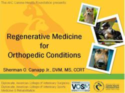 Regenerative Medicine to Treat Injured Dogs
