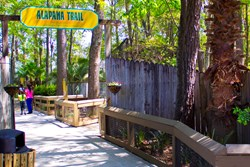 Wild Adventures' Alapaha Trail