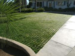 Drivable Grass pavers and sod for a green parking space.