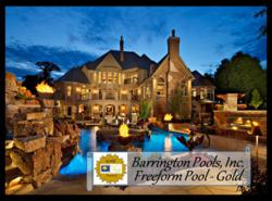 Gold Award Freeform Pool