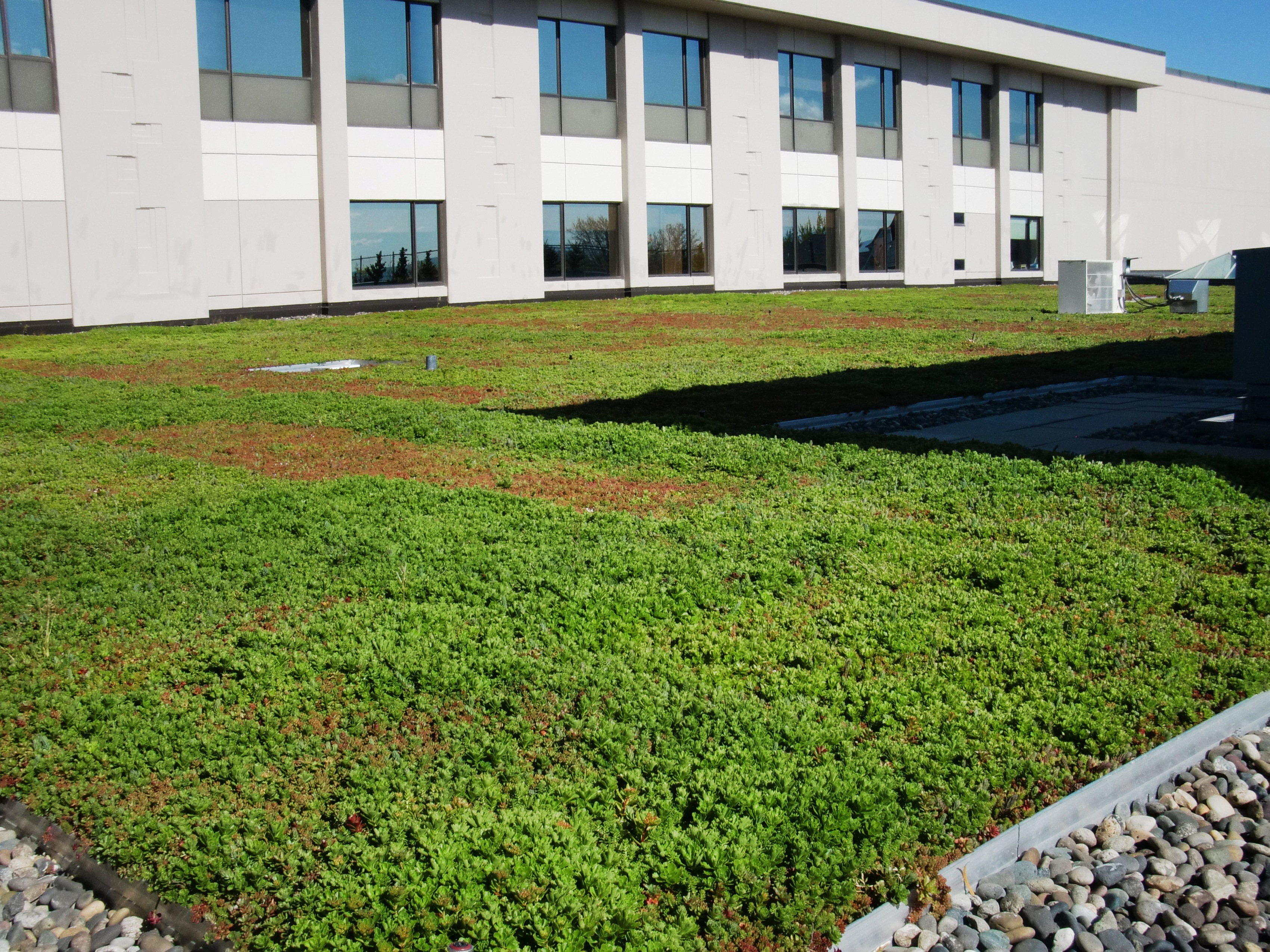 Providence St Mary Medical Center Greens Up With First