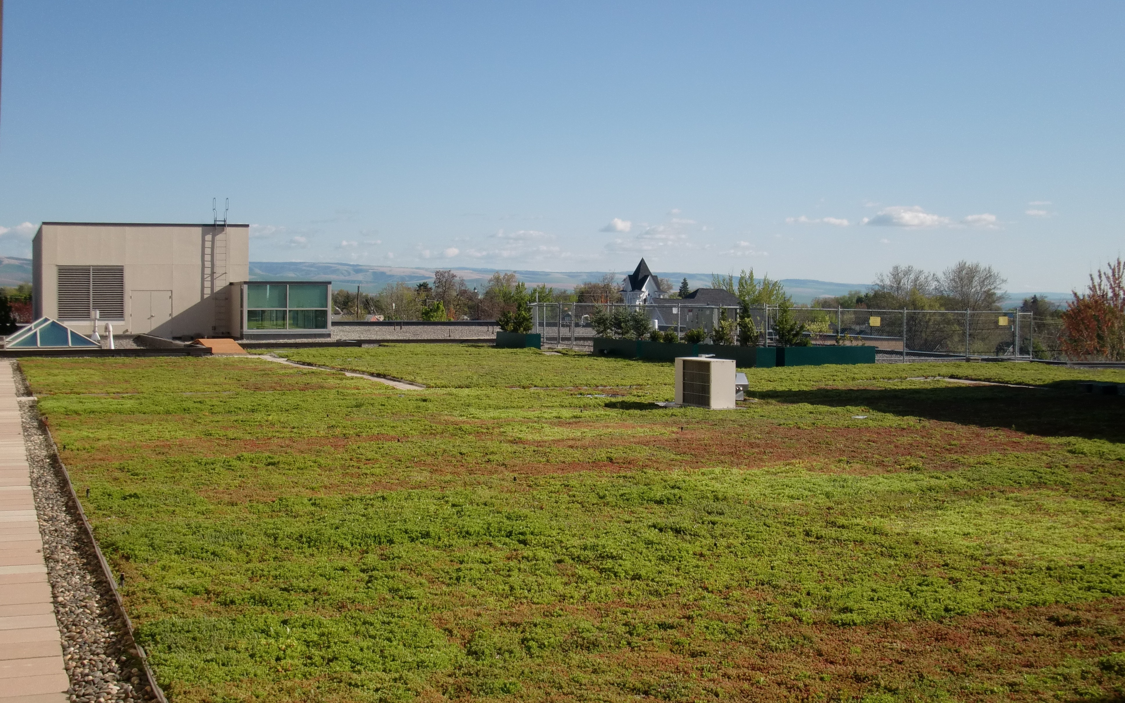 green roof construction and maintenance pdf