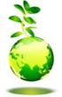 Wise Business Plans Now Offers Green Industry Business Plans