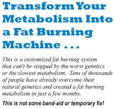 Customized Fat Loss Program