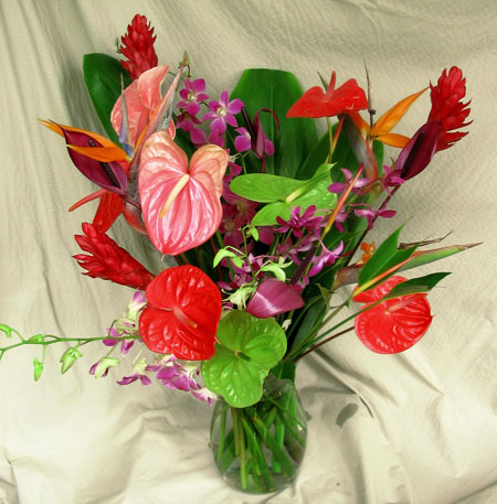 hawaiian flowers available for mother's day, Beautiful flower