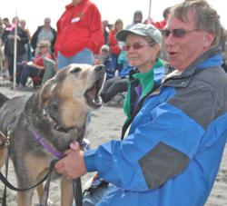 Doggie Olympic Games, dog show, dog-friendly, summer event, coast event, beach, Long Beach Peninsula, Washington, WA, family friendly, Washington Coast, good times, summer fun, mixed breed, outdoor events, canine