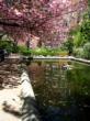 color photograph, Brooklyn NYC, Ellen Fisch Photo Tours