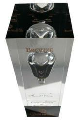 Bronze Edison Award Image