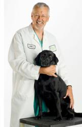 Veterinarian Stephen Withrow, a pioneer in cancer treatment for dogs