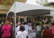 Photo of Ascendant Diagnostics' Booth at Komen Ozark Race for the Cure®