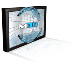 "e industry-leading provider of autostereoscopic, ""glasses-free"" 3D displays and digital signage solutions"