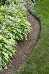Edge garden beds for crisp look.