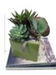 King Florist of Austin Unveils the 2013 Urban Garden Collection,...