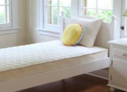 Naturepedic Kids Mattress