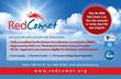 Red Comet Unveils New, Easier To Navigate, Website