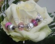 Swarovski Elements BeCharmed Bracelet