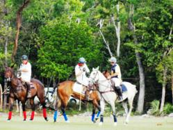 The 7th Polo Tournament Copa Del Rey