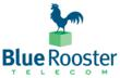 Blue Rooster Telecom Hires Two New Employees