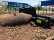 WW2 Aircraft Bomb, Most Likely American, was Discovered in Tel Aviv