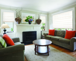 Roman Shades, Window Treatments, Cheap Blinds, Discounts Blinds, Shades