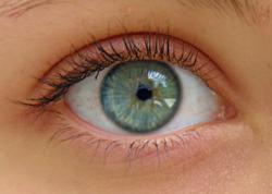 Eyeball contact lens