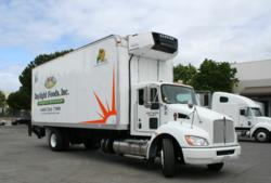 hybrid shipping truck