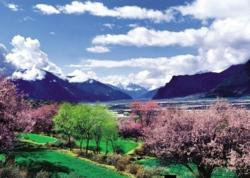 Tibet Nyingchi Scenery