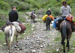 Songpan Horse Trekking