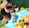 Westfield Valencia Town Center Opens Outdoor Play Area and Sales...