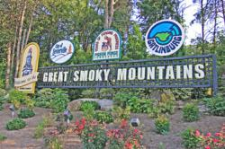 """The welcome sign into the Great Smoky Mountains. The sign sits atop a small hill of scattered foliage. Reading left to right, the sign shows a picture of the capital building in Pigeon Forge with the words """"Welcome to the"""" written on a ribbon where in all"""