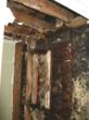 Mold Leaves Couple $500,000 Worth of Problem, My Cleaning Products...