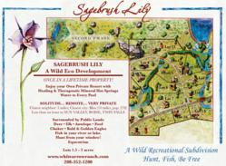 Sagebrush Lily Commercial Land Development