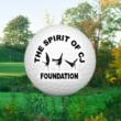 Spirit of CJ Foundations