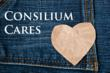 Consilium Cares!  Consilium Staffing Continues Partnership with...