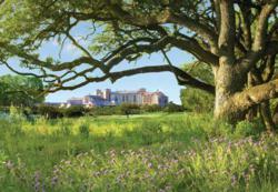 San Antonio Resort, San Antonio golf resorts, Golf resorts San Antonio, Texas Hill Country Resorts, San Antonio group hotel deals, meetings San Antonio