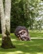 Celebrated Chinese Artist Zhang Huan is Subject of Meijer Gardens...