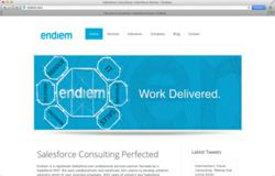 Houston Salesforce Consultant