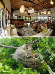 Photo Safari in Bocas del Toro, Panama