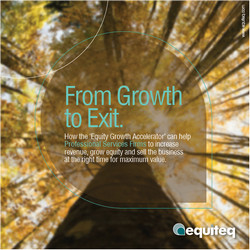 Equity Growth Accelerator for Consulting Firms