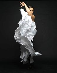 Photo Credit: National Institute of Flamenco