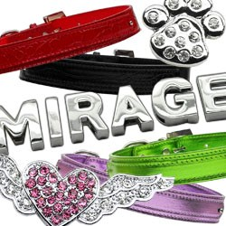 dog-collars-with-charm-sliders