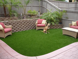 artificial grass runway,pet-friendly artificial turf,dog-friendly synthetic grass,dog-friendly synthetic turf,artificial pet landscape,synthetic turf drainage