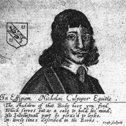 Nicholas Culpeper herbalist and astrologer