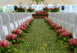 Destination wedding in Costa Rica, Costa Rica resort,  Hotel in Costa Rica