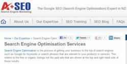 Search Engine Optimisation Auckland NZ